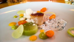 Seared scallop with citrus preserves, tapioca